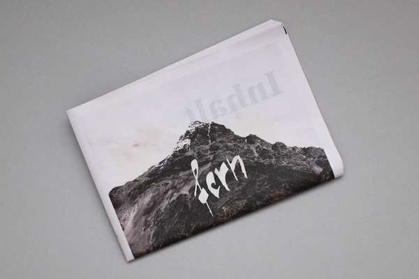 Fern Photography Travel Newspaper by Tom Reinert